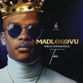 Madlokovu King of African House de TNS