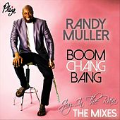 Joy in the Rain: The Mixes by Randy Muller
