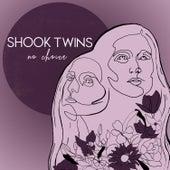 No Choice (Acoustic) de Shook Twins