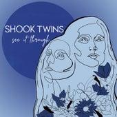 See It Through de Shook Twins