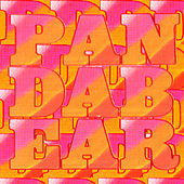 Playing The Long Game by Panda Bear