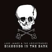 Diamonds In the Dark de Luke James