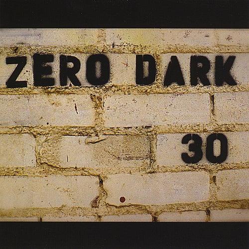 Zero Dark Thirty by Mike Mcclure Band