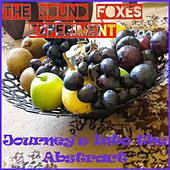 Journey's into the Abstract by The Sound Foxes Experiment