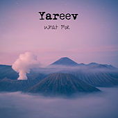 What For by Yareev