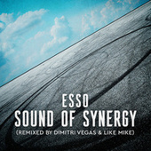 Sound of Synergy (Mixed by Dimitri Vegas & Like Mike) de Esso