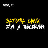 I'm a Believer by Satura Lanx