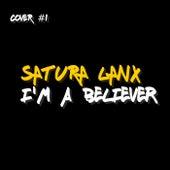 I'm a Believer van Satura Lanx
