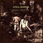 Angel I Need You by Attila Hegedus