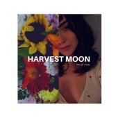 Harvest Moon de Phillip Long