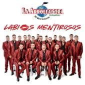 Labios Mentirosos by La Arrolladora Banda El Limon