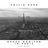 Graue Nomitag in Paris von Collie Herb