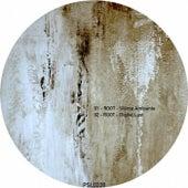 Tripper EP de Root