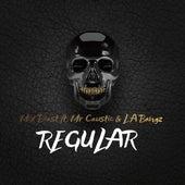 Regular (feat. Mr Caustic & LA Bangz) de Mix Beast