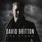 The Storm (Deluxe Edition) de David Britton