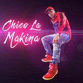 Palos Musicales by Chico La Makina
