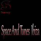 Space And Tunes  Ibiza von Various