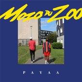 Payaa de Mozo du Zoo