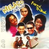 Forró Tribal (Ao Vivo) de Banda Melaço de Cana