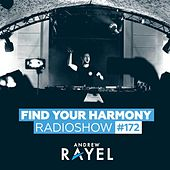 Find Your Harmony Radioshow #172 by Andrew Rayel