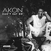 Can't Say No by Akon