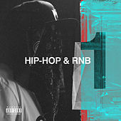 Hip Hop & RnB, Vol. 1 de Various Artists