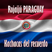 Rojaijú Paraguay de Various Artists