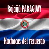 Rojaijú Paraguay by Various Artists
