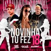 Novinha Tu Fez 18 de DJ BR do Chapadão & MC Rogê