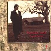 Promised Land by David Baroni