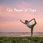 The Power of Yoga by Meditation Awareness