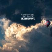 Silver Lining de Andy Salvanos