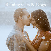 Raining Cats & Dogs by Rain Sounds Nature Collection