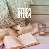 Study Study by Studying Music Group