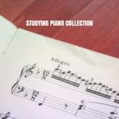 Studying Piano Collection de Moonlight Sonata