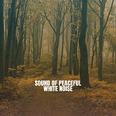 Sound of Peaceful White Noise by Rain Sounds and White Noise