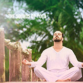 The Sounds of Yoga by Yoga Workout Music (1)
