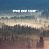 Nature Sound Therapy de White Noise Research (1)