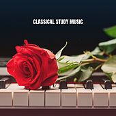 Classical Study Music by Instrumental