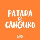 Patada de Canguro (feat. Axis DJ) de Kevo DJ