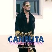 Intentaré olvidarte de Canelita