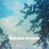 Ocean Sounds for Calm Spa by Ocean Waves For Sleep (1)