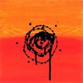 Targets by Derek Webb