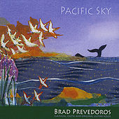 Pacific Sky by Brad Prevedoros
