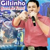 20 Anos de Carreira de Gilsinho Boca de Forró