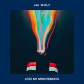 Lose My Mind Remixes by Jai Wolf