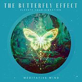 The Butterfly Effect : Elevate Your Vibration de Meditative Mind