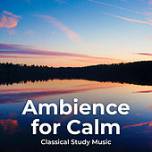 Ambience for Calm by Classical Study Music (1)