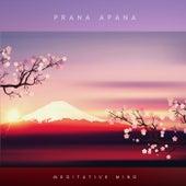 Prana Apana von Meditative Mind
