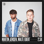 I Could Get Used To This by Martin Jensen